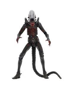 "Big Chap (Bloody Variant) - 7"" Scale Action Figure - Alien - Neca"