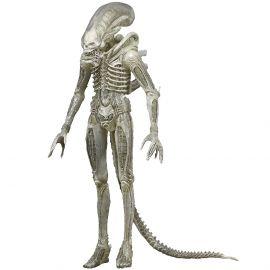 "Alien (40th Anniversary) - 7"" Scale Action Figure - Alien - Neca"