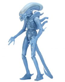 Blue Alien - Aliens Series 11 - NECA